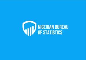 nigerian-bureau-of-statistics-logo-designed-by-th-somethingelse-team